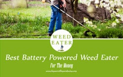 TOP 6 Best Battery Powered Weed Eater For The Money