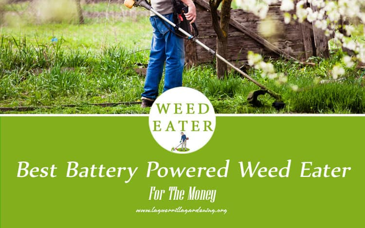 Best Battery Powered Weed Eater 2020