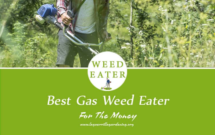 Best Gas Weed Eater For The Money 2020