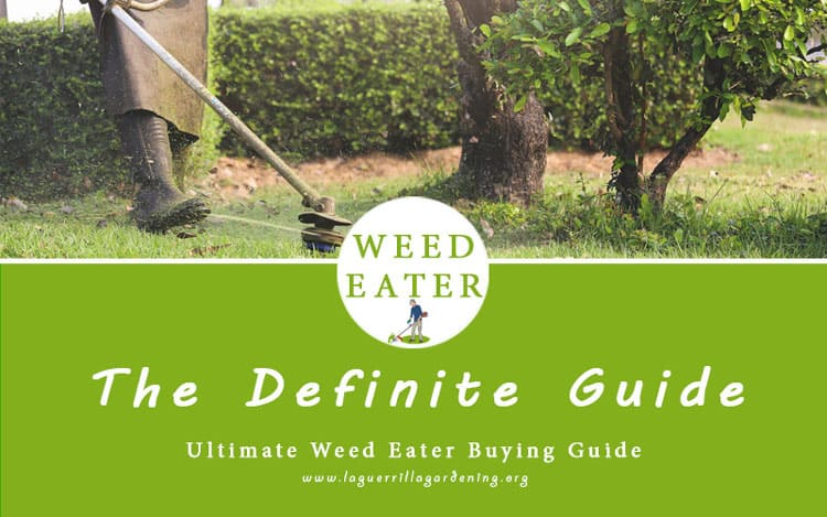 best weed eater reviews for the money 2020
