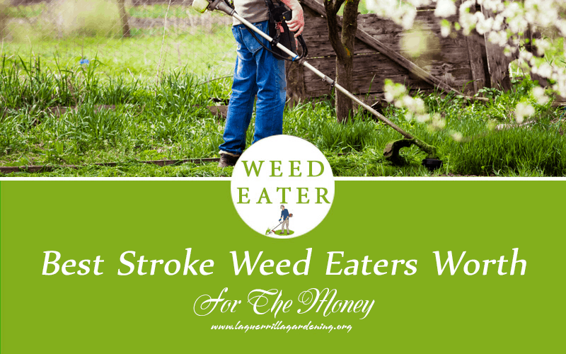 Best Stroke Weed Eaters Worth Reviews 2020