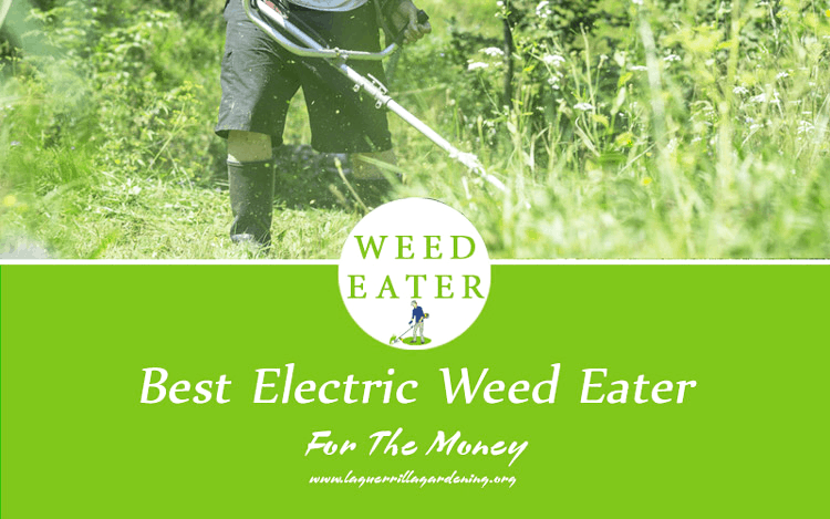 Best Electric Weed Eater Reviews 2020