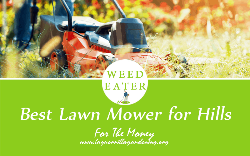 Best Riding Lawn Mower Reviews 2020