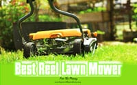 [TOP 10] Best Reel Lawn Mower For The Money