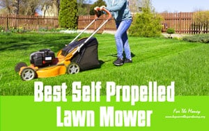 {TOP 5} Best Self Propelled Lawn Mower For The Money