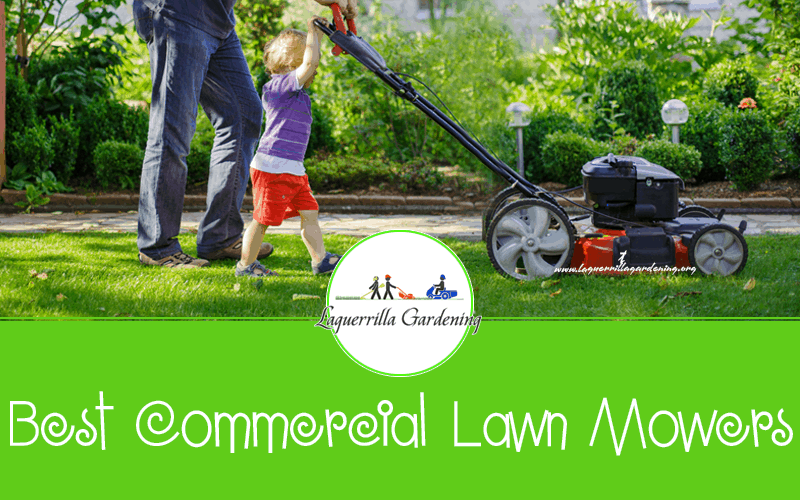 Best Commercial Lawn Mowers Reviews 2020