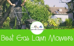 [TOP 10] Best Gas Lawn Mowers On The Market