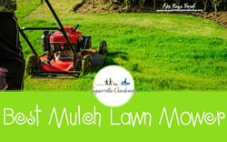 [TOP 10] Best Mulch Lawn Mower For Your Yard