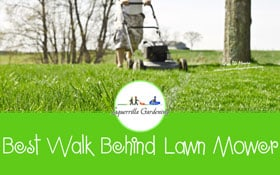 [TOP 5] Best Walk Behind Lawn Mower For The Money