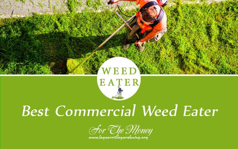Best Commercial Weed Eater 2021
