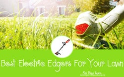 [TOP 10] Best Electric Edgers For Your Lawn