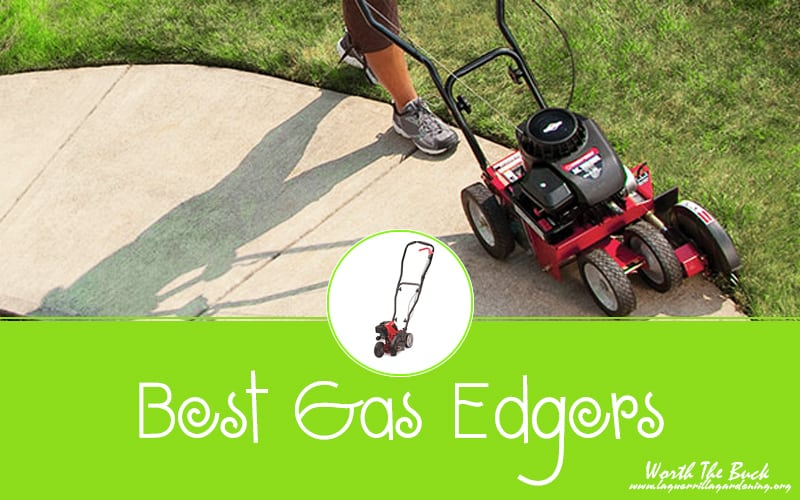 Best Gas Edgers Reviews 2020