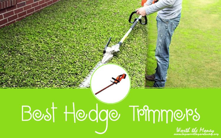 Best Hedge Trimmers Reviews 2020