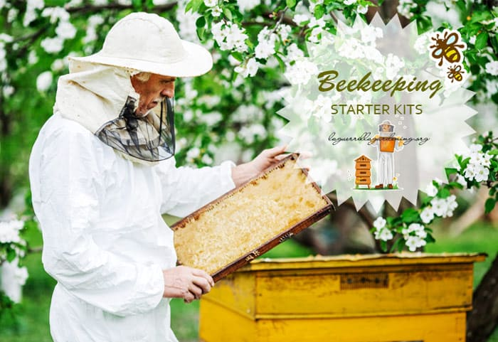 Professional Beekeeping Suit with Fancy Veil//Round Veil Pink In Color