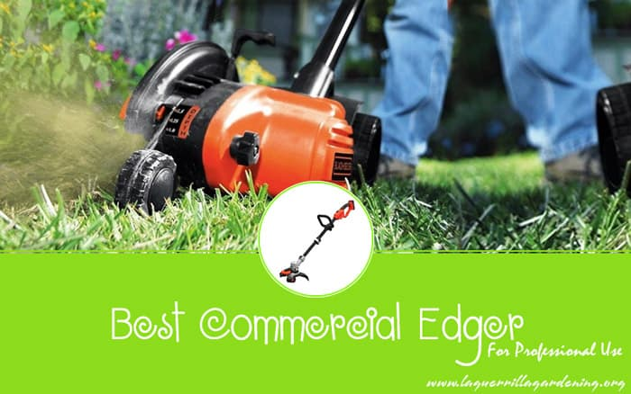 Best Commercial Edger For Professional Use 2020