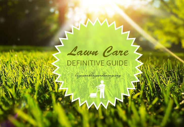 Lawn Care Definitive Guide 2020