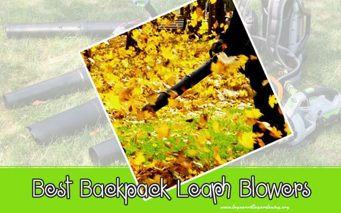 Best Backpack Leaf Blowers To Take The Weight Off Your Yard-Work